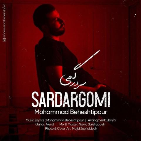 محمد بهشتی پور سردرگمی