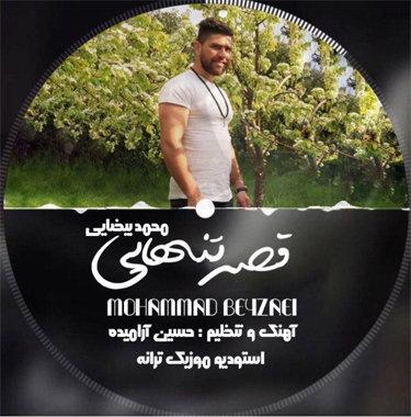 محمد بیضایی قصه تنهایی