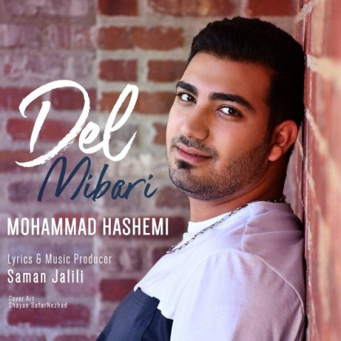 محمد هاشمی دل میبری