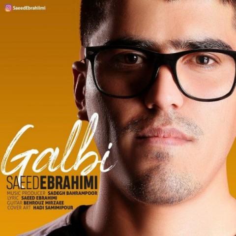 سعید ابراهیمی گلبی