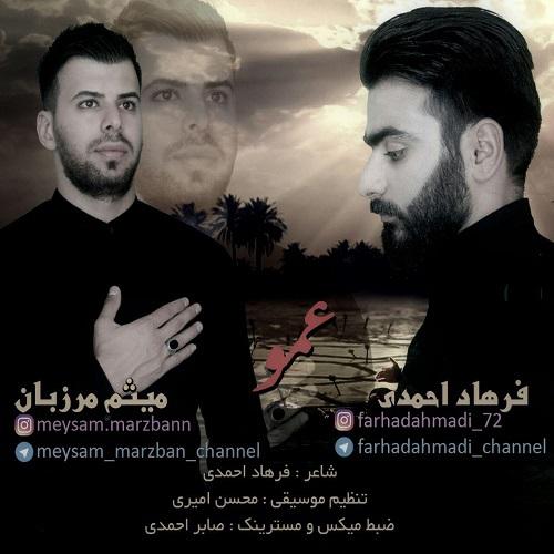 فرهاد احمدی و میثم مرزبان عمو