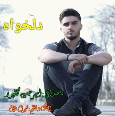 امیرحسین گلپور دلخواه